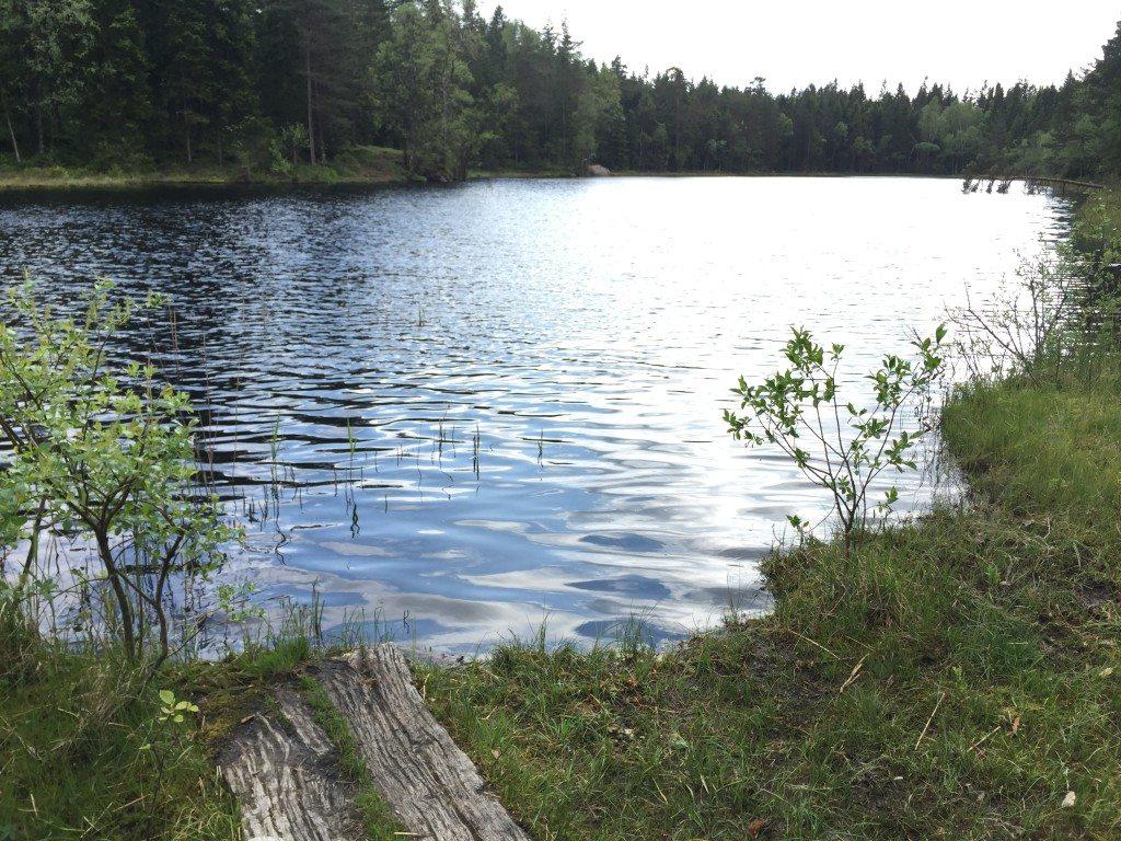 Boras swimrun первое озеро