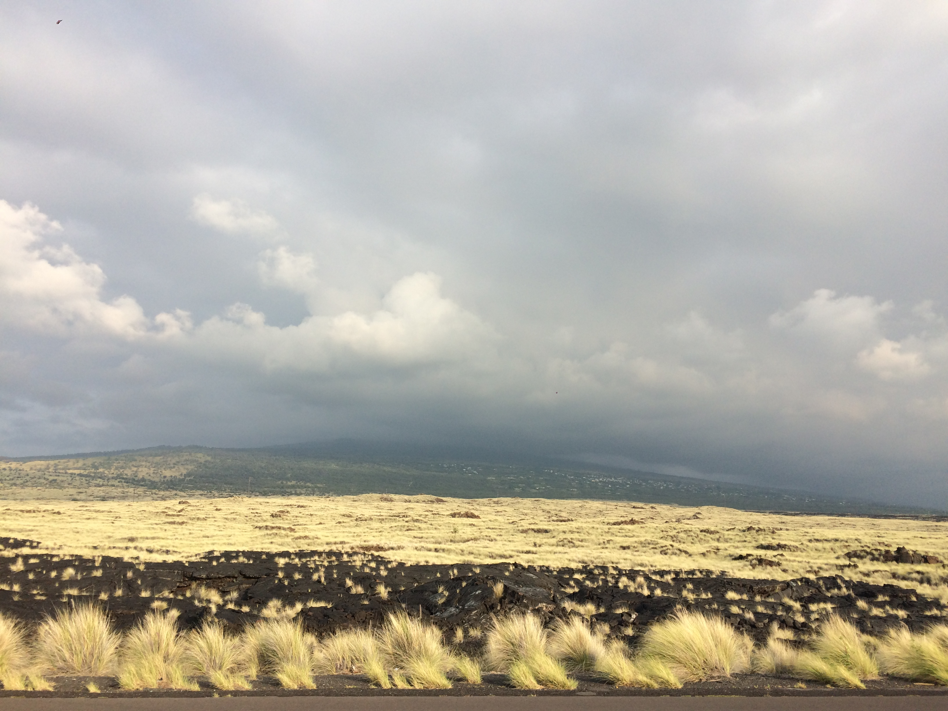 Лавовые поля Коны